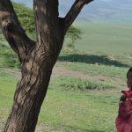 Maasai barn